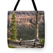 Valley Light Tote Bag