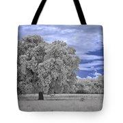 Valley Oak #2 Tote Bag