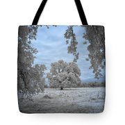 Valley Oak #3b Tote Bag