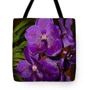 Vanda Dark Purple Tote Bag