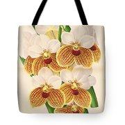 Vandas Anderiana Tote Bag by Philip Ralley