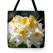 Vanilla Butterscotch Tote Bag