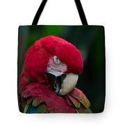 Vanity-close Up Of A Green Winged Macaw Tote Bag