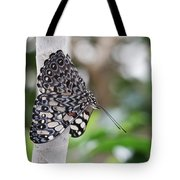 Variable Cracker Butterfly Tote Bag