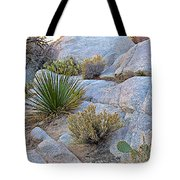 Varied Desert Flora Along Barker Dam Trail In Joshua Tree Np-ca Tote Bag