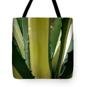 Variegated Agave Tote Bag