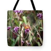 Variegated Fritillary Butterfly Tote Bag