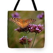 Variegated Fritillary Butterfly Square Tote Bag