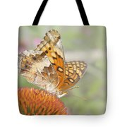 Variegated Fritillary On Cone Flower Tote Bag