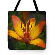 Variegated Lily Tote Bag