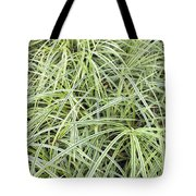 Variegated Monkey Grass Background Tote Bag