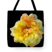 Variegated Yellow Rose Tote Bag