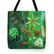 Variety Of Seeds And Fruits Tote Bag