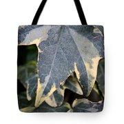 Varigated Ivy Leaves Tote Bag