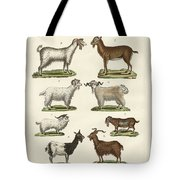 Various Kinds Of Goats And Bucks Tote Bag