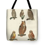 Various Kinds Of Owls Tote Bag