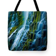 Veiled Wall Tote Bag
