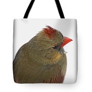 Veiw From Above Tote Bag