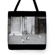Cats Of Venice Tote Bag