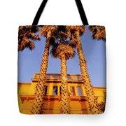 Venice Plams At Sunset Tote Bag