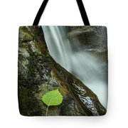 Vermont Aspen Leaf Waterfall Camels Hump Duxbury Tote Bag