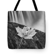 Vermont Autumn Maple Leaf Black And White Tote Bag