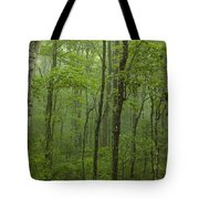 Vermont Mount Mansfield Green Forest Fog Panorama Tote Bag