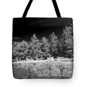 Vernon Lake Five Tote Bag