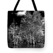 Vernon Lake Trip Tote Bag