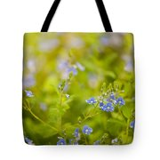 Veronica Chamaedrys Named Speedwell Or Gypsyweed Tote Bag