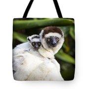 Verreauxs Sifaka With Baby Madagascar Tote Bag