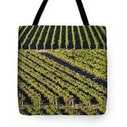 Vertical And Diagonal  Tote Bag