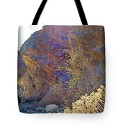 Vertical View Of Big Painted Canyon Trail In Mecca Hills-ca Tote Bag