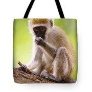 Vervet Monkey Tote Bag