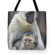 Vervet Monkeys Tote Bag