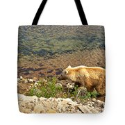 Very Light-colored Grizzly Bear In Moraine River In Katmai Nnp-ak Tote Bag