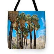 Very Tall Fan Palms In Andreas Canyon In Indian Canyons-ca Tote Bag