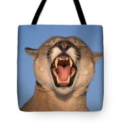 V.hurst Tk21663d, Mountain Lion Growling Tote Bag