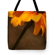 Vibrant Black Eye Tote Bag