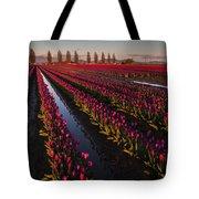 Vibrant Dusk Tulips Tote Bag