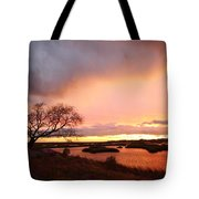 Storm At Dusk 2am-108350 Tote Bag