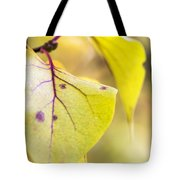 Vibrant Leaves Tote Bag by Dana Moyer