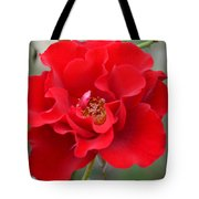 Vibrantly Red Rose Tote Bag