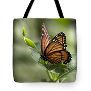 Viceroy Butterfly Tote Bag