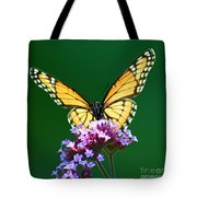 Viceroy Butterfly Square Tote Bag