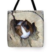 Vicious Animal Sleeping Tote Bag