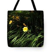 Victoria Park-7 Tote Bag