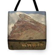 Vicuna Herd Grazing At Mt Chimborazo Tote Bag