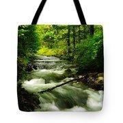 Viento Creek In June Tote Bag