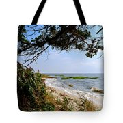View At East Point  Tote Bag